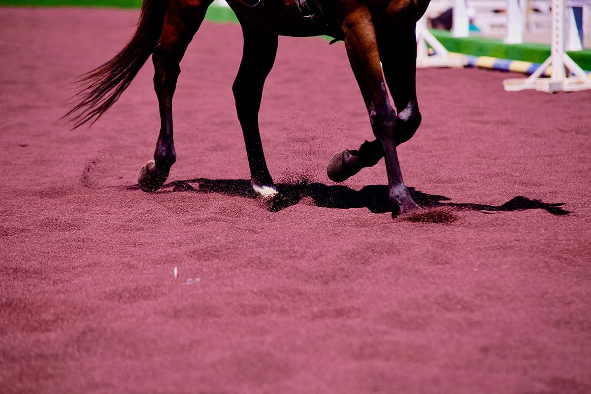 Superfici per l'equitazione