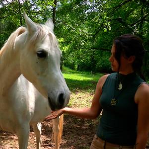 Un cavallo può essere allergico al fieno?  Scopri la storia della cavalla Juanita e la soluzione per la sua allergia…