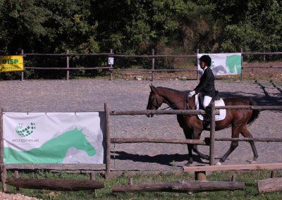 Equitazione Todi
