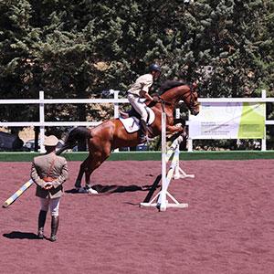 Per la prima volta in Italia una struttura per cavalli interamente in gomma riciclata
