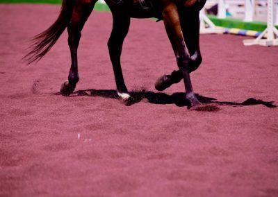 La gomma riciclata nell'equitazione