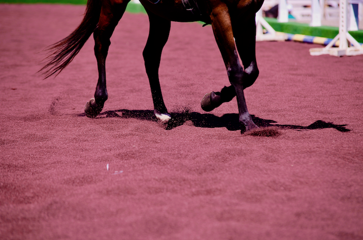 Horses' wellbeing gallops on recycled rubber at FieraCavalli