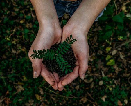Lotta al cambiamento climatico e riciclo dei Pneumatici Fuori Uso: Ecopneus celebra la giornata della Terra