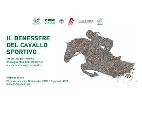 La gomma riciclata per il benessere del cavallo sportivo: 4 webinar online per docenti e studenti di Veterinaria